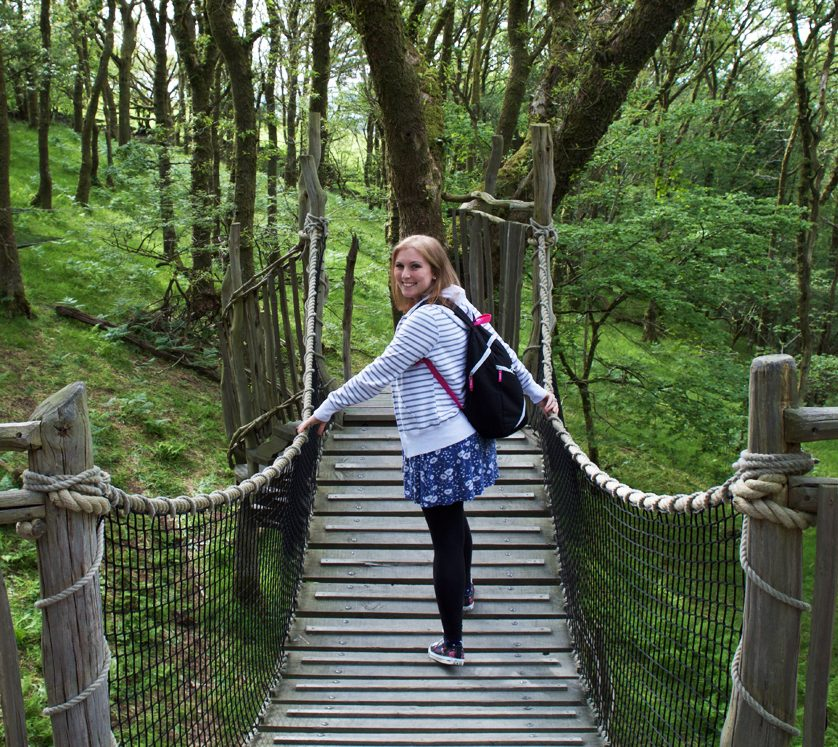 Crossing-bridge-treehouse-wales-living-room-5-ways-to-avoid-getting-sick-whilst-travelling-footsteps-on-the-globe