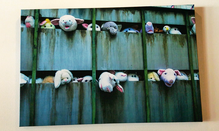 Picture of some animals stuffed toys in a simulated slaughterhouse vehicle at vegenation downtown las vegas