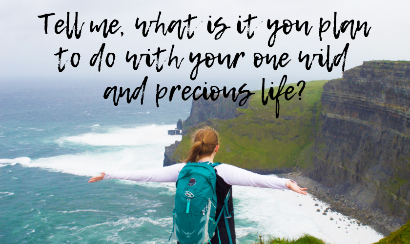 """Mel with her arms out in front of the Cliffs of Moher in Ireland from behind with the quote """"Tell me, what is it you plan to do with your one wild and precious life?"""" by Mary Oliver, American Poet"""