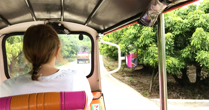 Mel from Footsteps on the Globe pictured driving down a rural road in Mae Wang in a Tuk Tuk from behind with greenery on each side of the Tuk Tuk