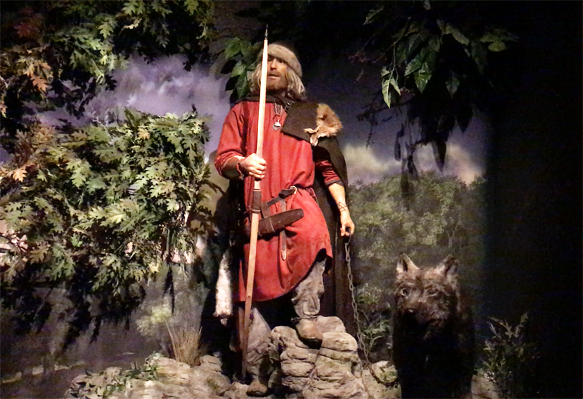 Male viking dummy holding a spear and a chain with a wolf attached to it at the Jorvik Viking Centre in York