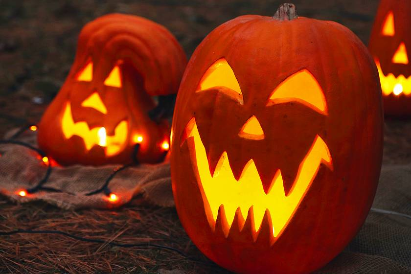Carved pumpkins lit up from the inside with jack o lantern scary faces